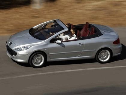 2005 Peugeot 307 CC 19