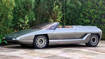 1980 Lamborghini Athon Speedster concept by Bertone 6