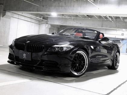2010 BMW Z4 ( E89 ) by 3D Design 1