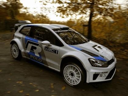 2011 Volkswagen Polo R WRC prototype 19