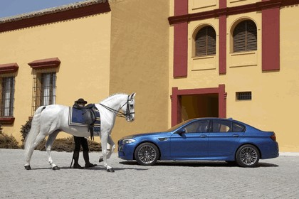 2011 BMW M5 ( F10 ) 269