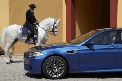 2011 BMW M5 ( F10 ) 270
