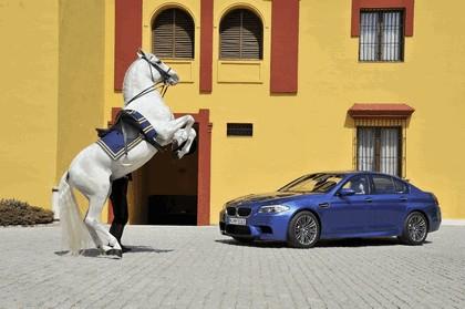 2011 BMW M5 ( F10 ) 272