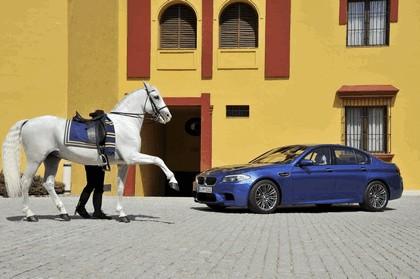 2011 BMW M5 ( F10 ) 273