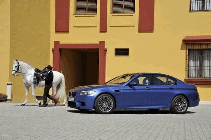 2011 BMW M5 ( F10 ) 274