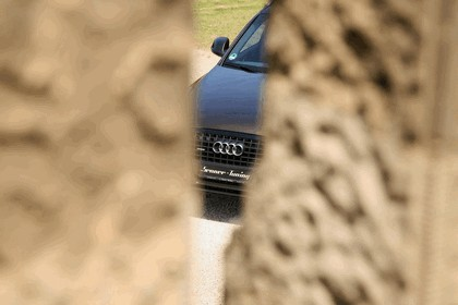 2011 Audi Q5 by Senner Tuning 3