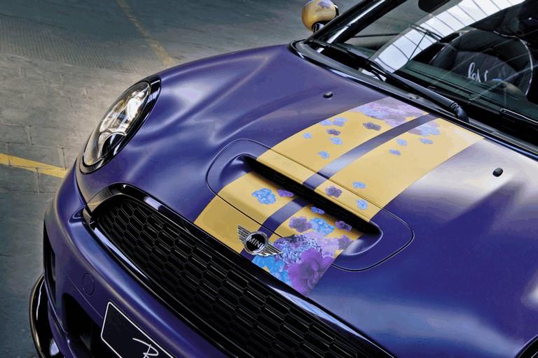 2012 Mini Roadster by Franca Sozzani for Life Ball 346478