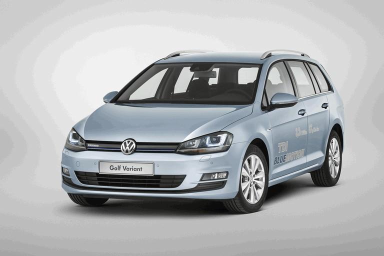 2013 Volkswagen Golf ( VII ) Variant TSI BlueMotion 377237