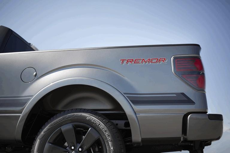 2013 Ford F-150 Tremor 389754
