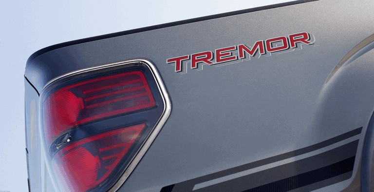 2013 Ford F-150 Tremor 389757