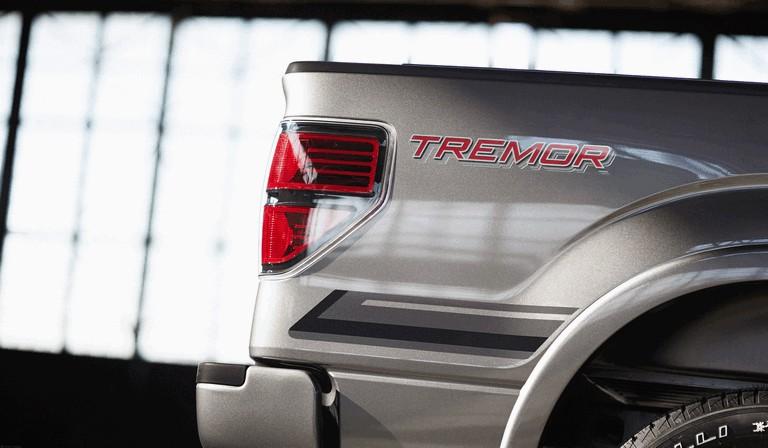 2013 Ford F-150 Tremor 389758