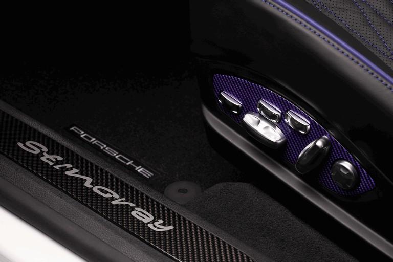 2013 Porsche Panamera ( 970 ) Stingray GTR by TopCar 403904