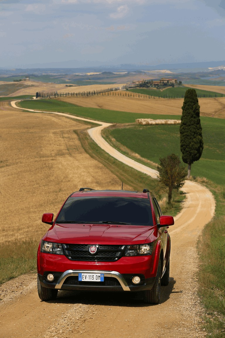 2014 Fiat Freemont Cross 415678