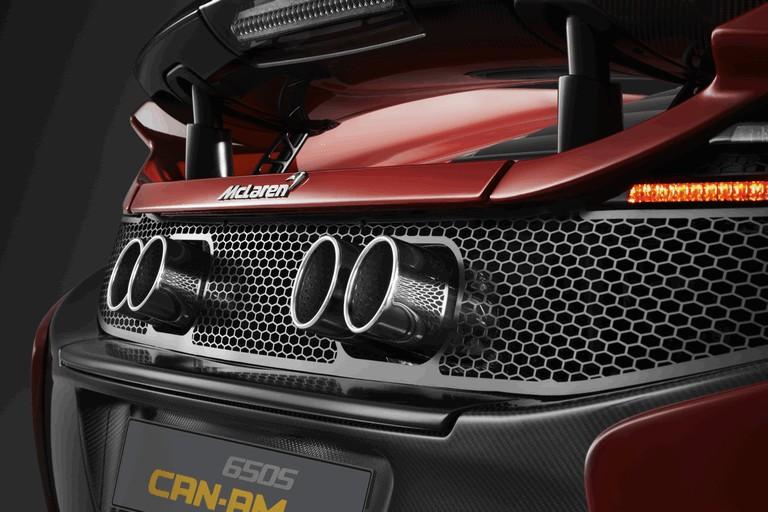 2015 McLaren 650S Can-Am 472556