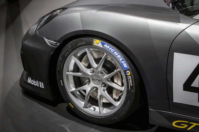 2015 Porsche Cayman GT4 Clubsport 439420
