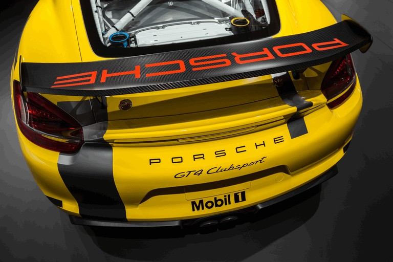 2015 Porsche Cayman GT4 Clubsport 439421