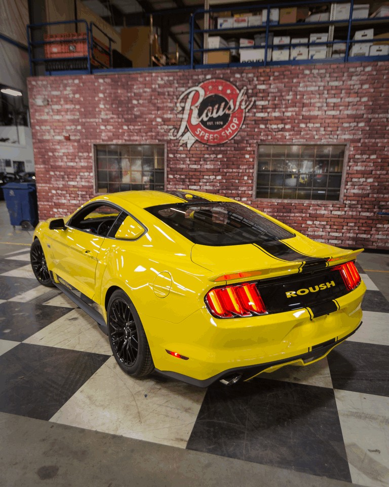 2015 Ford Mustang R2300 Blue Oval Edition by Roush 439924
