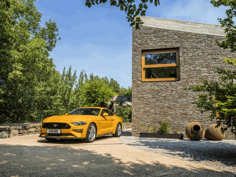2018 Ford Mustang 5.0 GT 466264