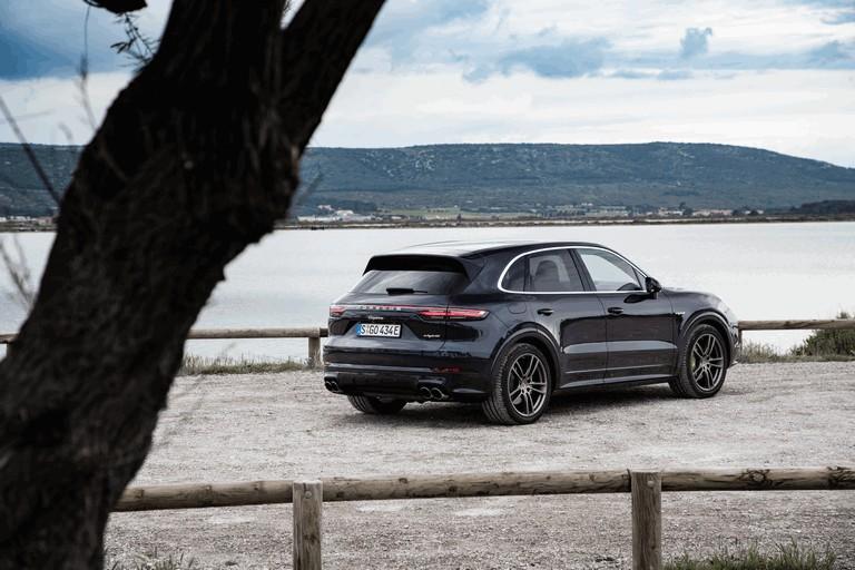 2019 Porsche Cayenne E-hybrid 491539
