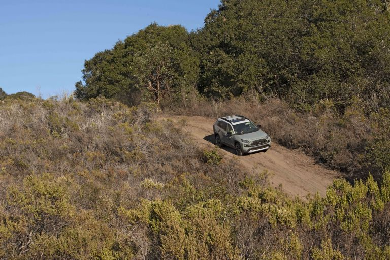 2019 Toyota RAV4 Adventure - Lunar rock 520516