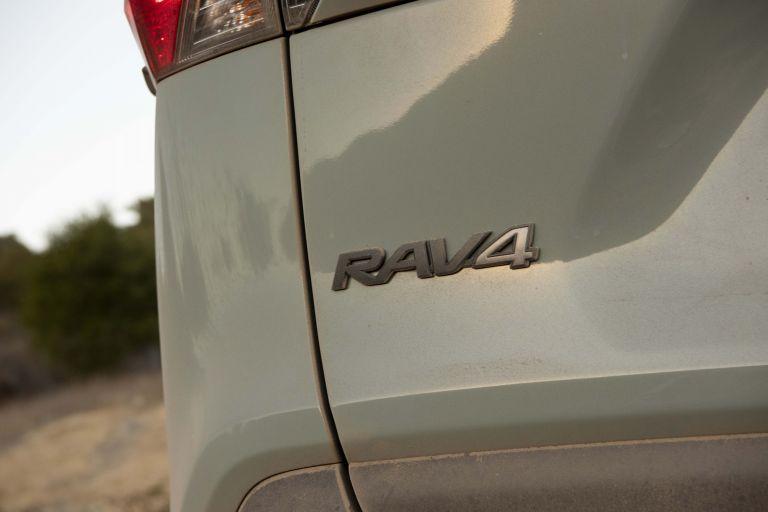 2019 Toyota RAV4 Adventure - Lunar rock 520557
