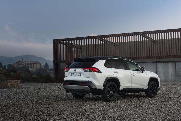 2019 Toyota RAV4 Hybrid - EU version 533007