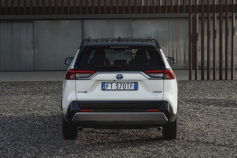 2019 Toyota RAV4 Hybrid - EU version 533009