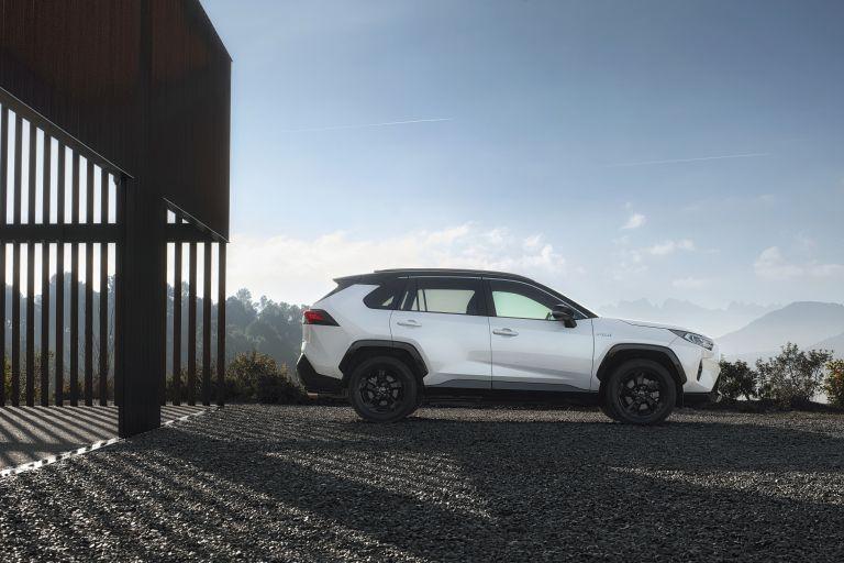 2019 Toyota RAV4 Hybrid - EU version 533010