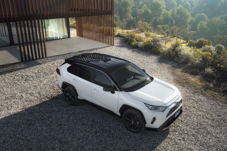 2019 Toyota RAV4 Hybrid - EU version 533011