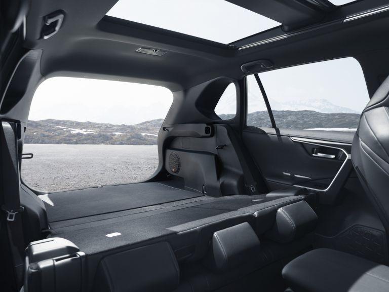 2019 Toyota RAV4 Hybrid - EU version 533068