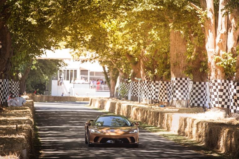 2019 McLaren GT 551534