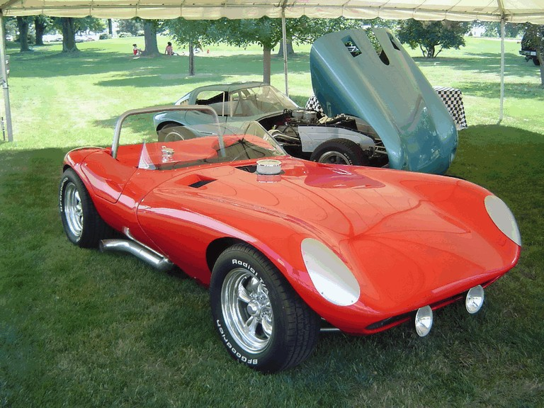 2008 Cheetah Roadster 228055