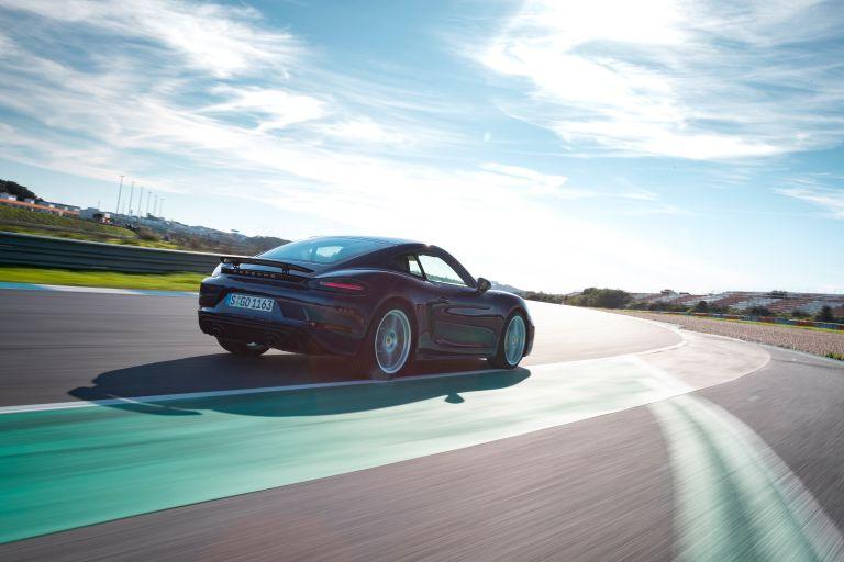 2020 Porsche 718 Cayman GTS 4.0 576321