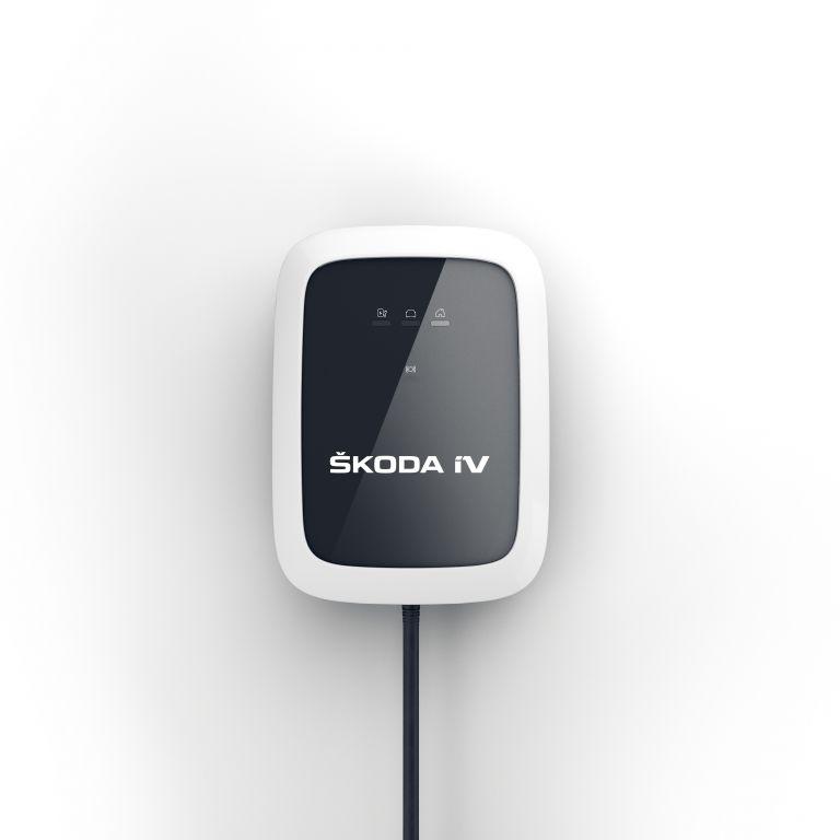 2021 Skoda Enyaq iV 595833