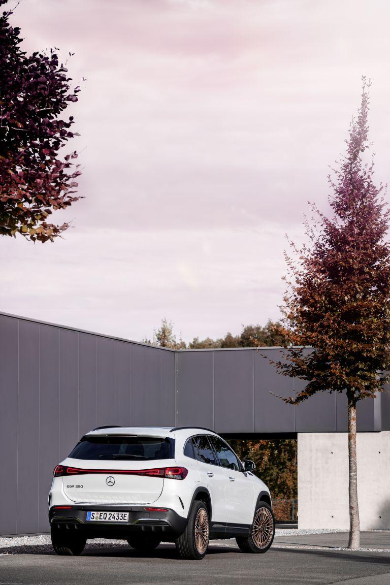2021 Mercedes-Benz EQA 617512