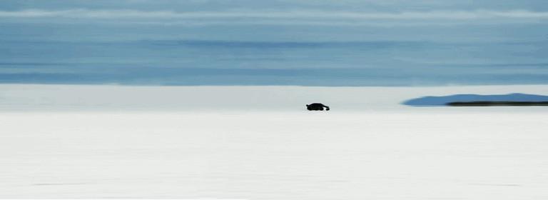 2009 Jaguar XFR - Bonneville speed record 244451