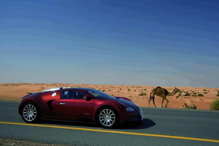 2009 Bugatti Veyron Centenaire 250082