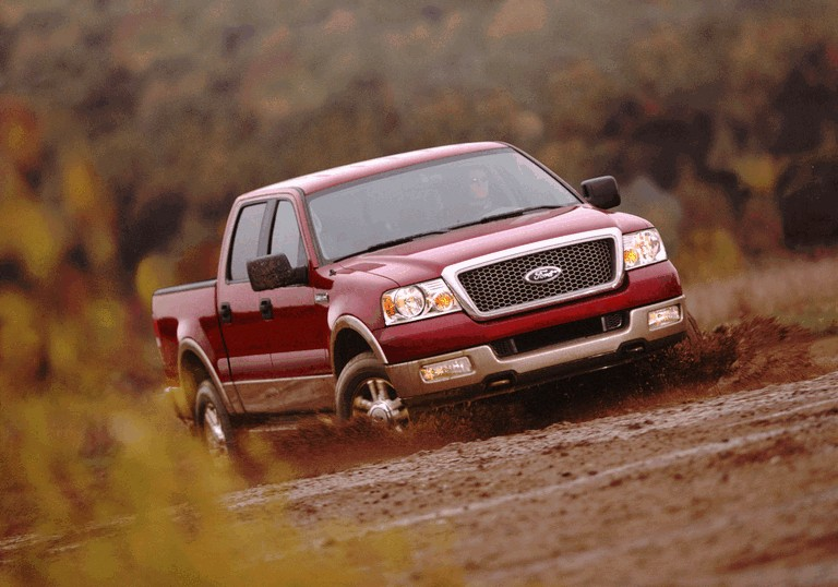 2004 Ford F-150 485377