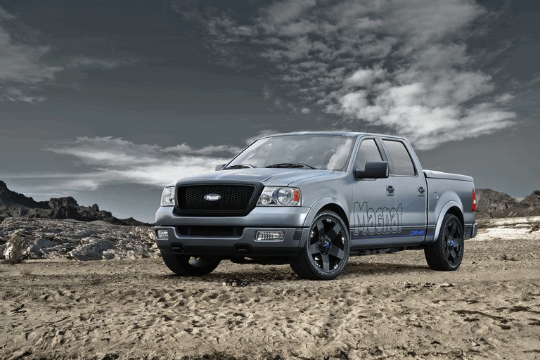 2010 Ford F150 by Magnat 283461