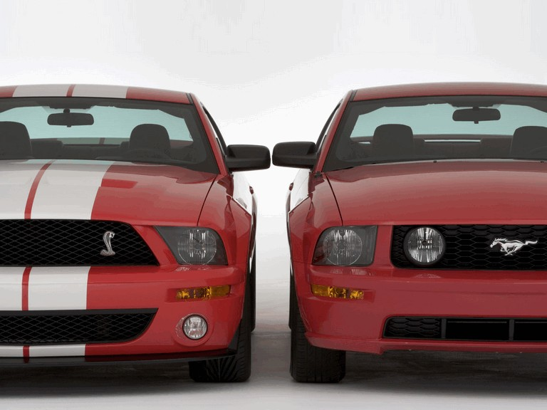 2005 Ford Mustang Shelby GT500 Cobra 206302