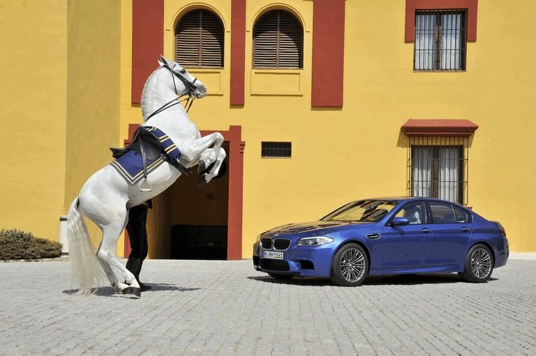 2011 BMW M5 ( F10 ) 314556
