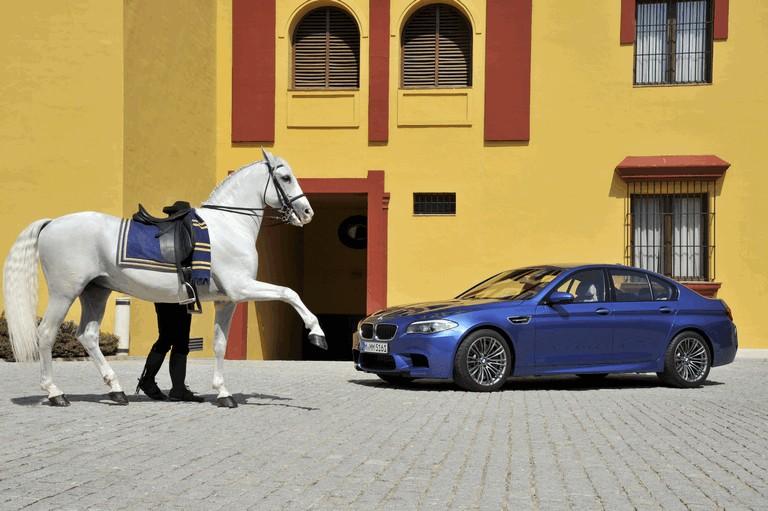 2011 BMW M5 ( F10 ) 314557