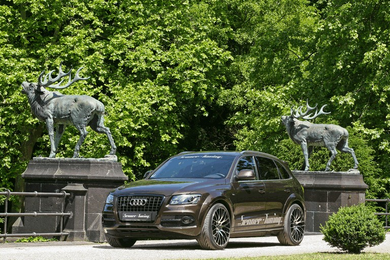 2011 Audi Q5 by Senner Tuning 310426