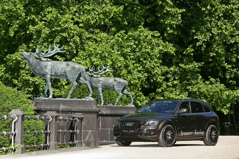 2011 Audi Q5 by Senner Tuning 310427